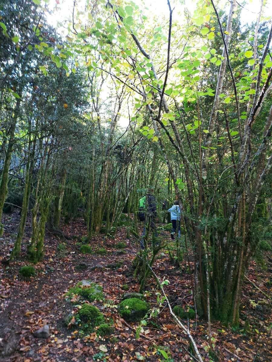 Trail running Valle de Tena, ruta perfecta con niños 10