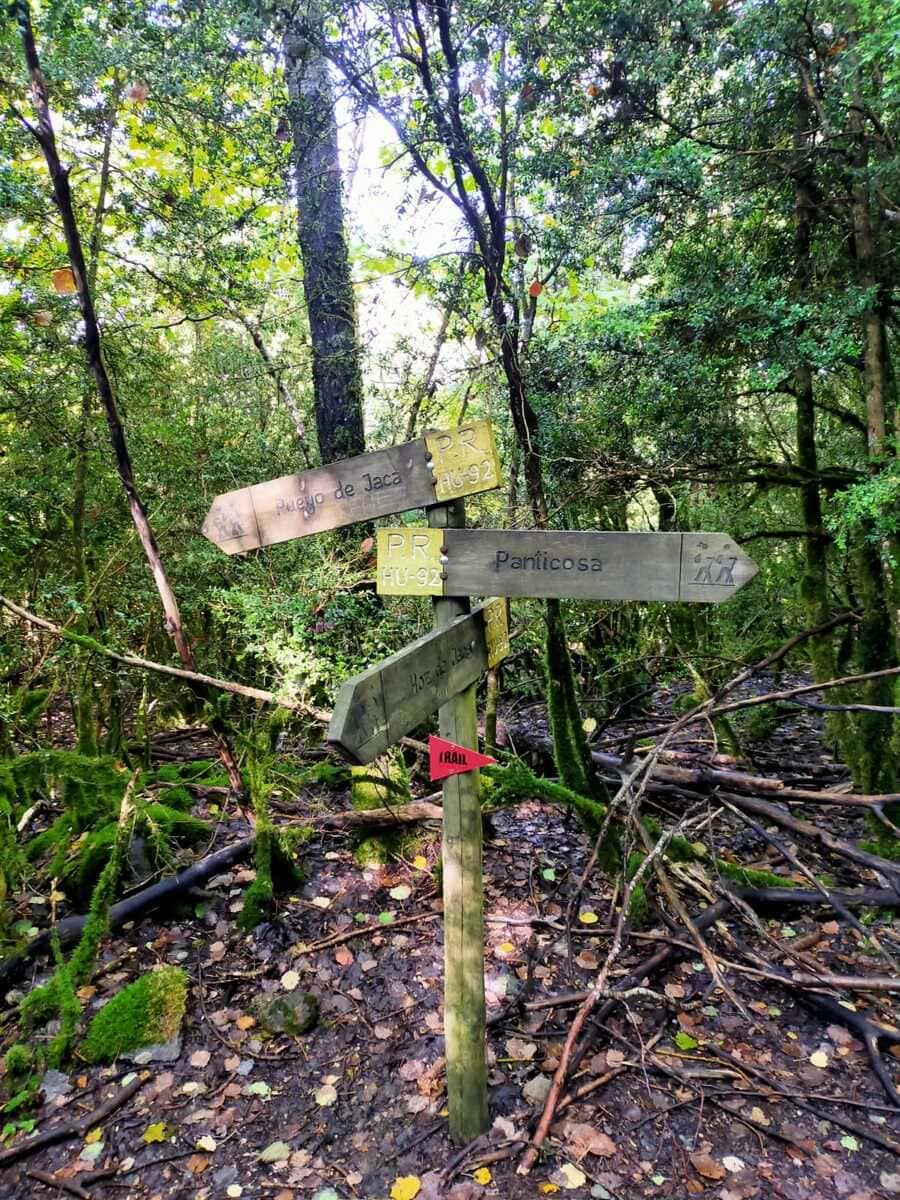 Trail running Valle de Tena, ruta perfecta con niños 11