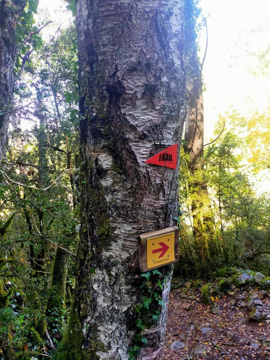 Trail running Valle de Tena, ruta perfecta con niños 9