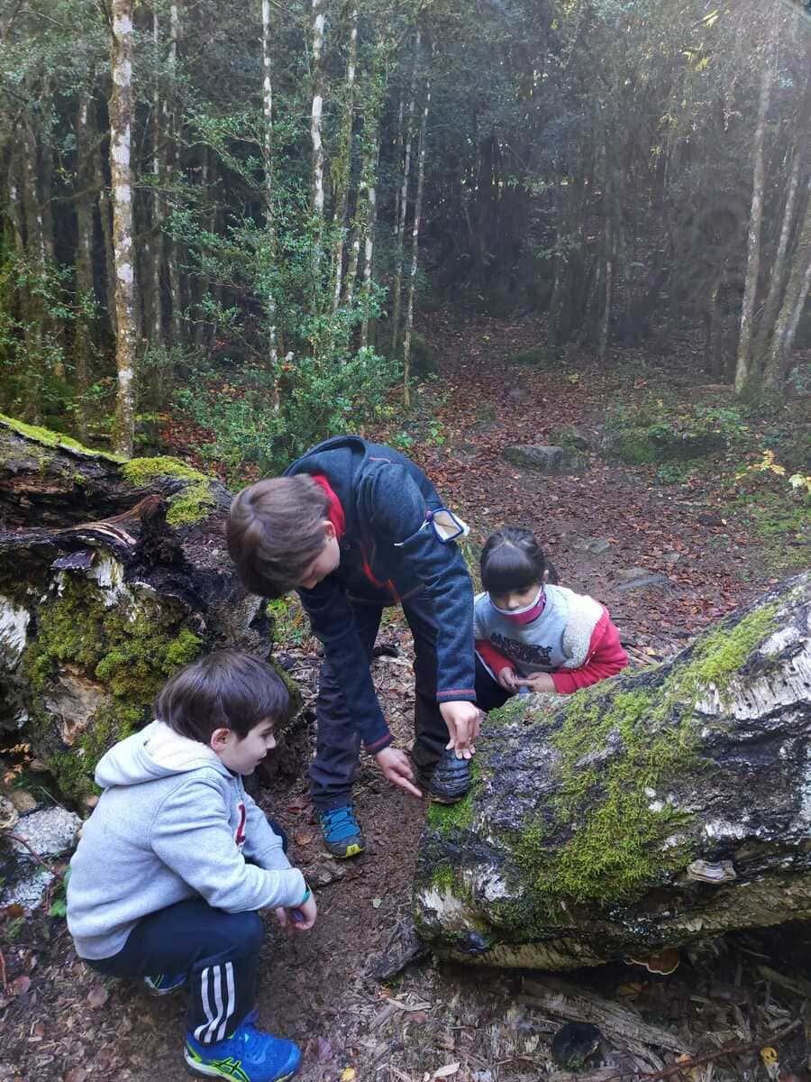 Trail running Valle de Tena, ruta perfecta con niños 2