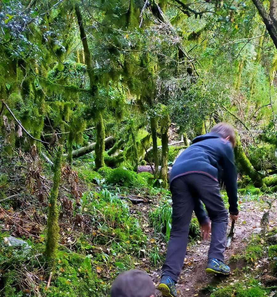 Trail running Valle de Tena, ruta perfecta con niños 7