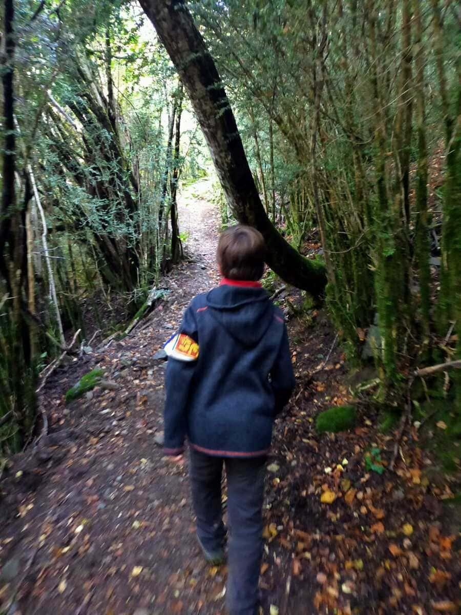 Trail running Valle de Tena, ruta perfecta con niños 5