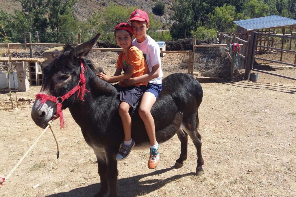 Mejores experiencias Familiares en Aragón. El tío Carrascón