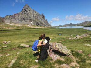 Viajar por Aragón con perros